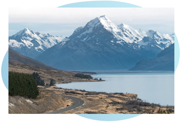 Shieling Laboratories Regulatory & Compliance New Zealand